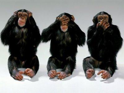 3 Monos Sabios